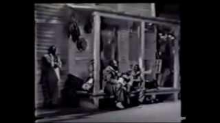 The Blues - Hammie Nixon, Sleepy John Estes