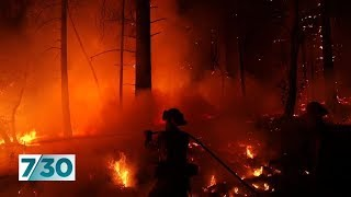Former fire chief delivers chilling bushfire warning to Australia's government | 7.30