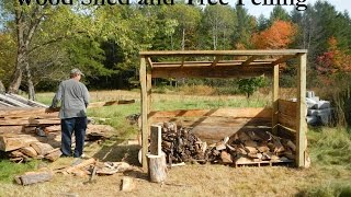 Wood Shed and Tree Felling