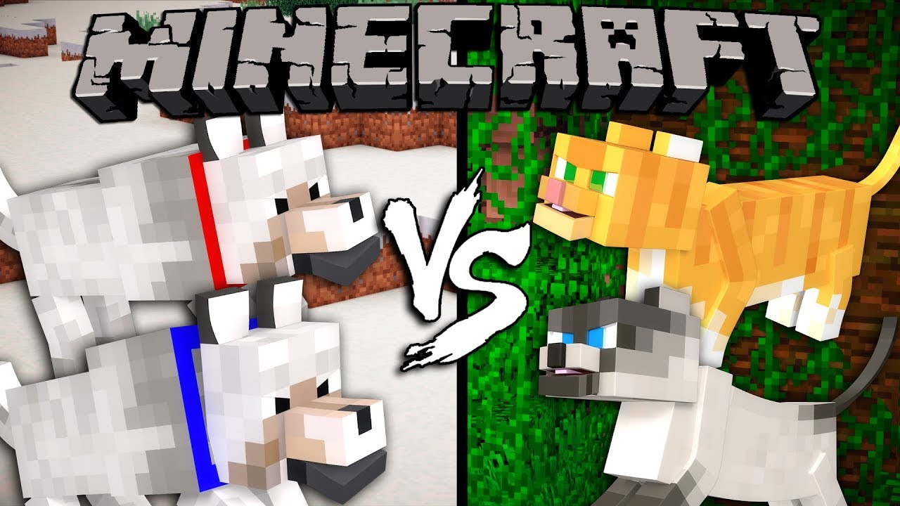 dogs vs cats minecraft youtube. Black Bedroom Furniture Sets. Home Design Ideas