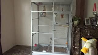 клетка для попугая Жако размером 1,7 х 1,2 х 0,8 м. Цена на сайте