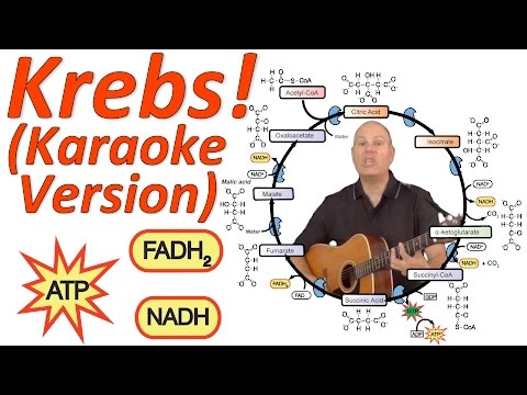 Krebs Cycle Musical Lecture, Karaoke Version