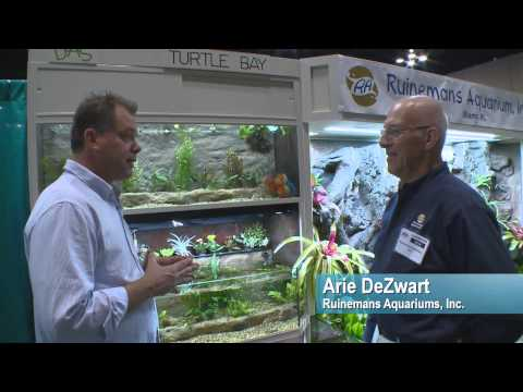 Aquatic Experience  Chicago with Blue Zoo TV