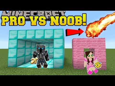Minecraft: NOOB VS PRO!!! - SURVIVE THE...