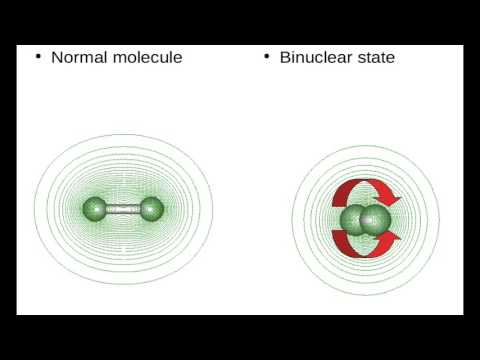 Binuclear Atoms Low Energy Nuclear Reactions Ecat Rossi Effect