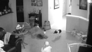 original   mom falls over baby gate