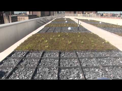 Blue/Green Roof & Hotel Water Conservation Challenge