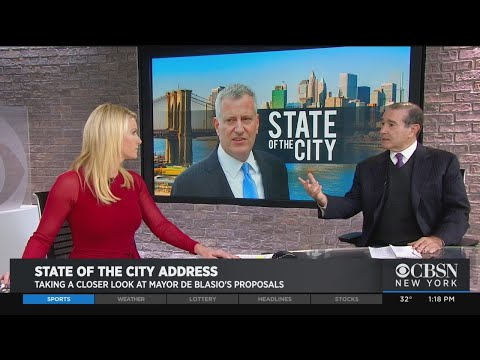 Hofstra Political Analyst Breaks Down Mayor De Blasio