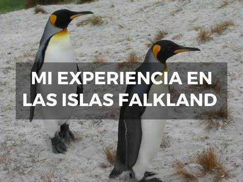 Experiencia en las Islas Falkland