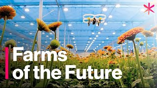 The Futuristic Farms That Will Feed the World | Freethink | Future of Food