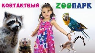 Контактный Зоопарк. Дети в зоопарке гладят животных. Видео для детей. Zoo animals