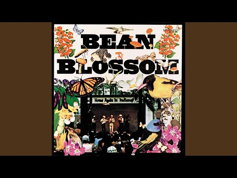 Sweet Little Miss Blue Eyes (Live) (1973 Bean Blossom, Indiana)
