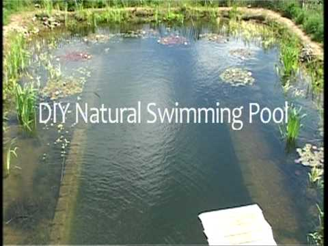 Diy Natural Swimming Pools Youtube