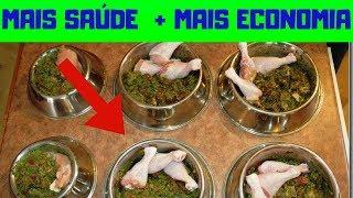como fazer alimentação natural para cães receita como fazer biscoito para cachorro