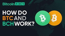 How do Bitcoin and Bitcoin Cash work? - Bitcoin 101