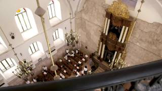 PBS - Jerusalem Show & Documentary