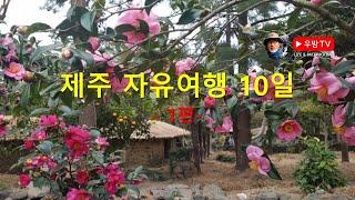[우방TV73] 제주 자유여행 10일. 1편