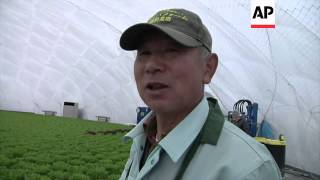 Tsunami victims find work in farming domes ++REPLAY++