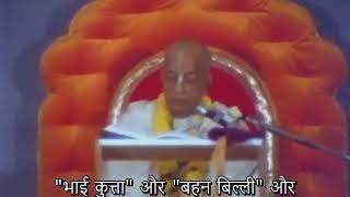 Prabhupada 1033 यीशु मसीह भगवान के पुत्र हैं, भगवान के सर्वश्रेष्ठ पुत्र, तो उनके प्रति हमें पूरा सम