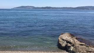 室漁港北側海岸線〜徳島県鳴門市〜