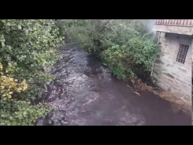 Río Trefacio negro por los incendios