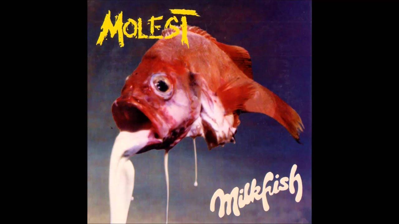 Molest Milkfish