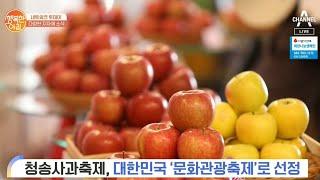 [네트워크 투데이] 청송사과축제, 대한민국 '문화관광축…