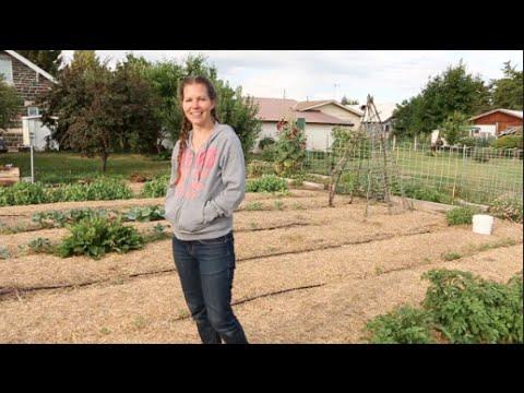 Gardening With a Short Season || Braid Girls