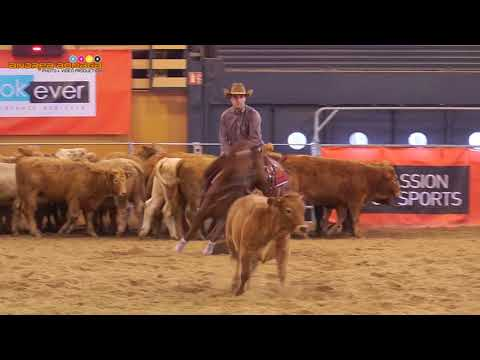 2017 NCHA EUROPEAN OPEN 4TH PLACE