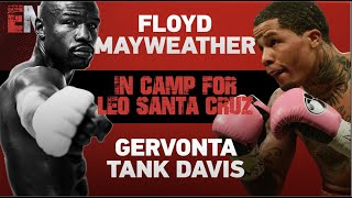 Floyd Mayweather & Gervonta Davis working video by @agentearle Alonzo Earle