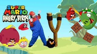 Real life mario in Angry bird World-bowser12345