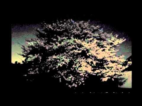 Hiroshi Watanabe & Popnoname Cherry Breaks TEMMA-Teje Remix