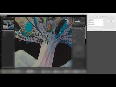 Lightroom 10 slows down with calibrated monitors