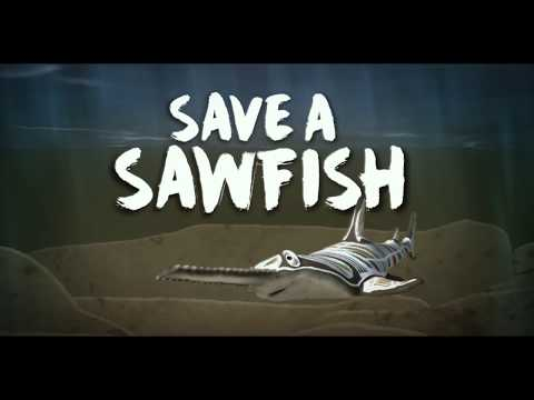 Save A Sawfish English Dan Hartney