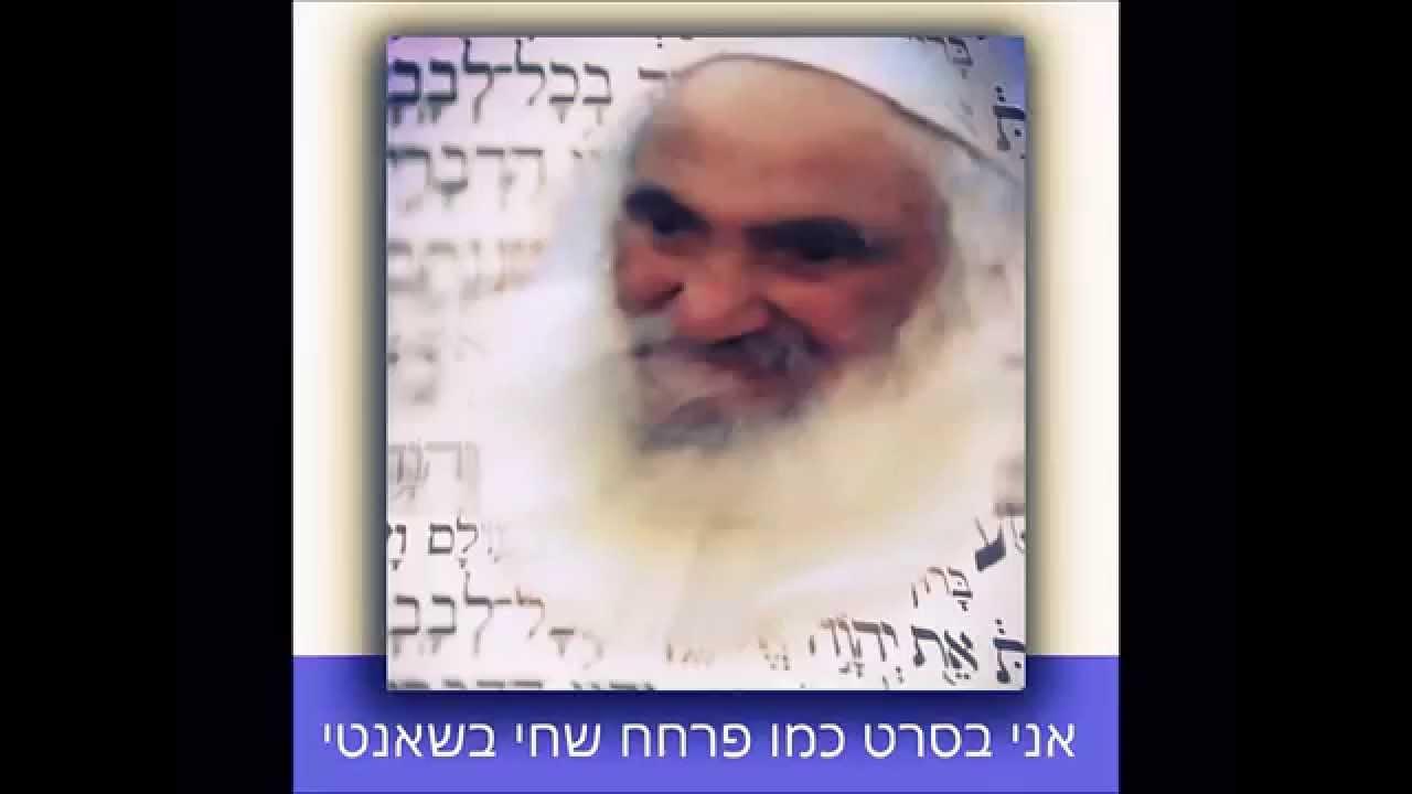 """קאבר יהודי לשיר של אייל גולן  """" סטאטוס מאוהב """" רק בורא עולם """" שר העורב"""
