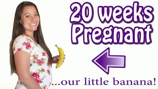 20 WEEKS ULTRASOUND || 20 WEEKS PREGNANT