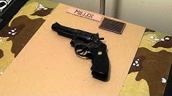 Budget .357 Magnum Revolver
