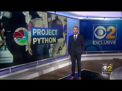Project Python DEA Takes Down Mexican Drug Cartels