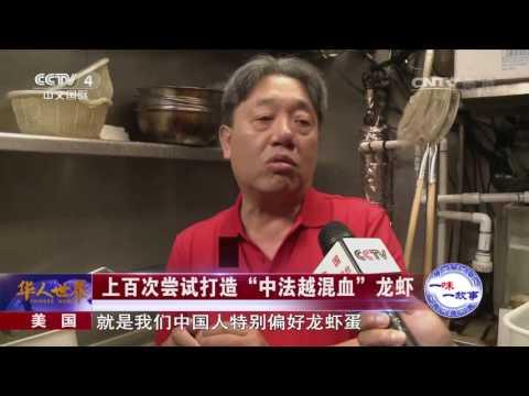 《华人世界》 20170718 | CCTV-4