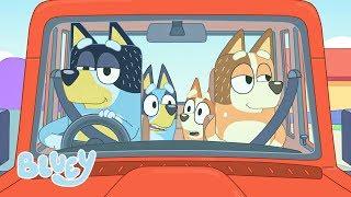 Fun in the Car!   Bluey