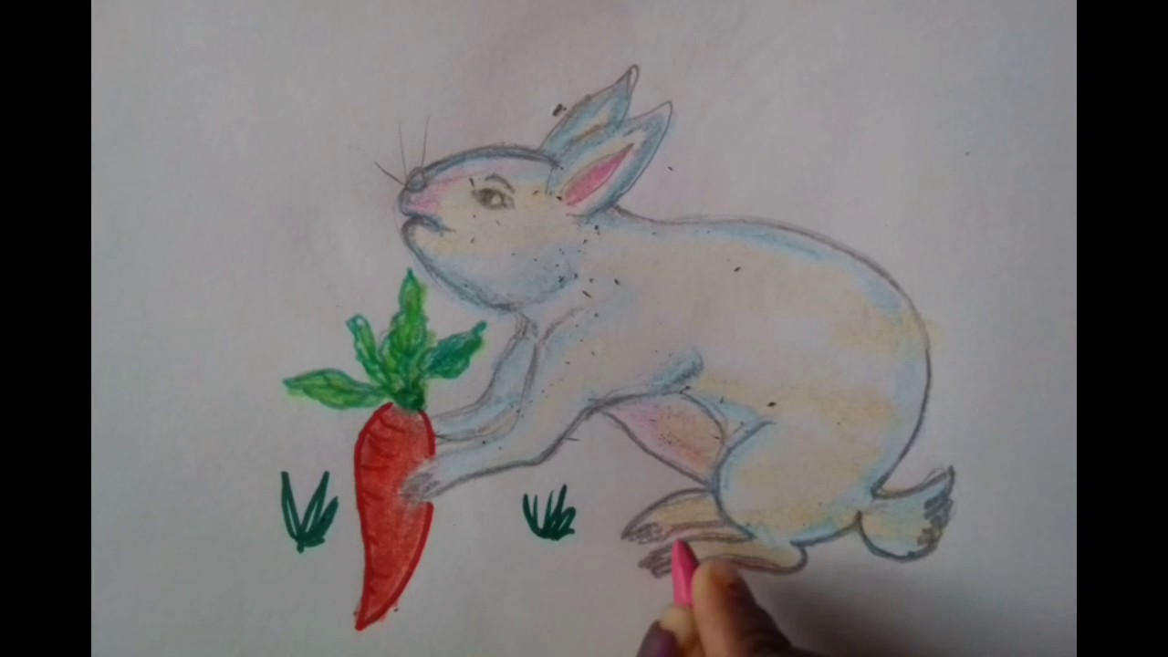 How To Draw A Rabbit With Carrot Youtube