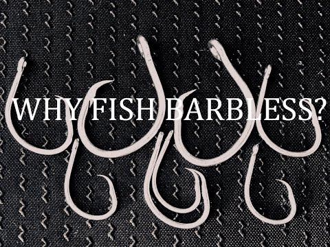 WHY FISH BARBLESS?