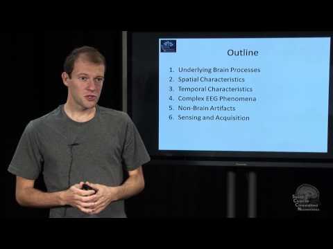 Lecture 2 EEG Basics