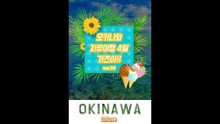 오키나와 자유여행 간접체험 가즈아!  _ 브라보재팬