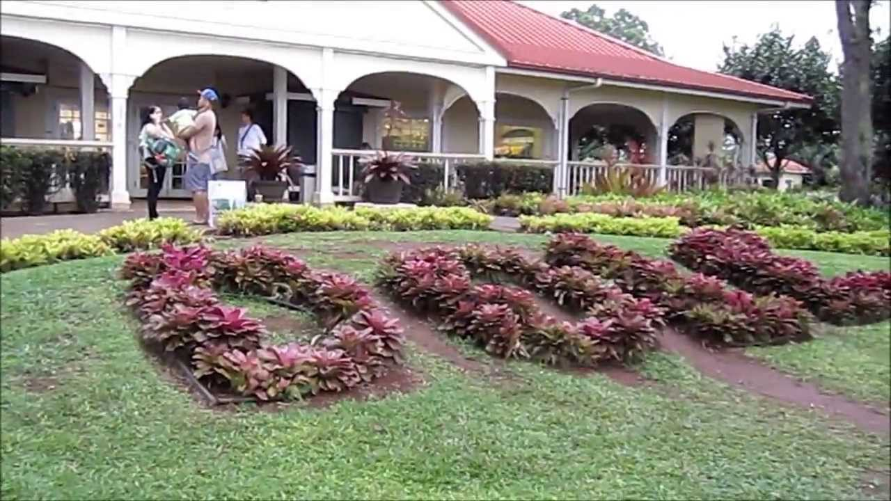 Dole Plantation -- The World's Largest Maze; Hawaii's ...