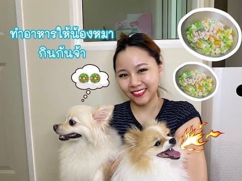 เรื่องหมาๆ : ทำอาหาร ให้ น้องหมากิน แบบง่ายๆ มีประโยชน์ | PhingPhing