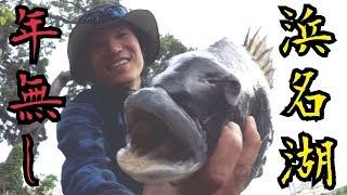 浜名湖黒鯛釣り 年無し降臨!記録更新です thumbnail