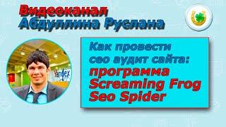 Как провести сео аудит сайта с помощью программы Screaming Frog Seo Spider
