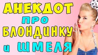РЖАЧНЫЙ АНЕКДОТ про БЛОНДИНКУ и ШМЕЛЯ Самые смешные свежие анекдоты