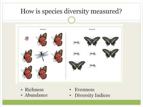 How to Implement and Verify Biodiversity Conservation  in Organic Agriculture